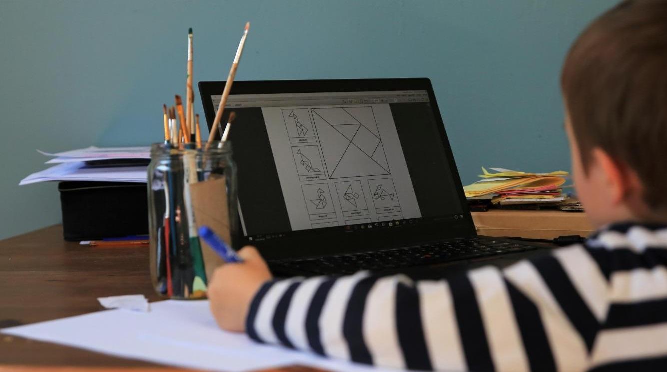 Coronavirus : les inégalités d'accès aux outils numériques pour apprendre à distance deviennent une problématique